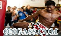 PGA♣️♣️♣️ONGA88.COM♣️♣️♣️PGA: 체험머니☻☻☻ONGA88.COM☻☻☻체험머니 Sumo, Wrestling, Sports, Lucha Libre, Hs Sports, Sport