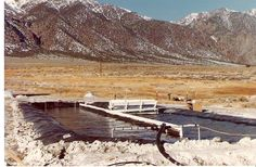 Spirulina ponds in Nevada before moving the farm to Hawaii | Nutrex Hawaii