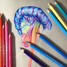 Image result for jellyfish drawing tutorial