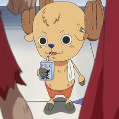 Chopper without his hat just feels wrong One Piece One Piece Chopper, Zoro One Piece, One Piece Anime, Anime One, Anime Couples Manga, Cute Anime Couples, Anime Girls, Miyazaki Spirited Away, Hayao Miyazaki