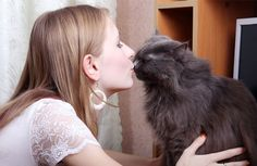 15 Surefire Ways to Bond with your Cat. When you want to bond with your cat in a meaningful way, watch what she does and imitate her, understand that she's a child who never grows up, and appeal to her senses. Crazy Cat Lady, Crazy Cats, I Love Cats, Cute Cats, Cat Site, Dog Food Recall, Cat People, Pet Care, Cats And Kittens