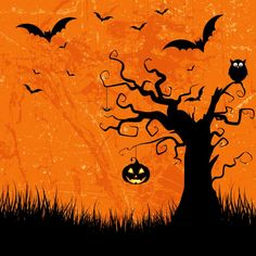 Grunge style halloween background with bats jack o lantern and owl Free Vector Halloween Images Free, Fröhliches Halloween, Halloween Pictures, Halloween Cards, Halloween Illustration, Halloween Background Tumblr, Halloween Backgrounds, Halloween Desserts, Halloween Decorations