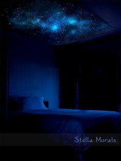 Glow in the Dark Star Ceiling Canopy Crux 5'3 x by StellaMurals