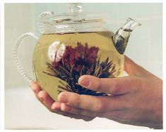 blooming tea I have had this and it is really good!