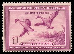 duck stamp-----1938