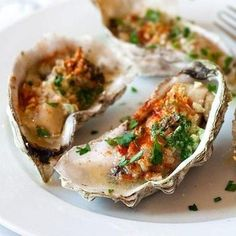 Grilled oysters - oyster on the half shell with garlic, butter, parsley and paprika. Juicy, briny and crazy delicious grilled oysters recipe Easy Delicious Recipes, Great Recipes, Favorite Recipes, Fish Recipes, Seafood Recipes, Cooking Recipes, Asian Recipes, Seafood Dishes, Fish And Seafood