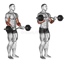 that you can get that great looking huge, and get a cannonball biceps, well you should work it on three points. So let's see 7 best biceps exercises Fitness Workouts, Ace Fitness, Weight Training Workouts, Muscle Fitness, Fitness Diet, Health Fitness, Fitness Hacks, Muscle Food, Mens Fitness