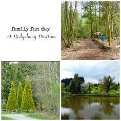 Bedgebury Pinetum near Tonbridge, Kent, England - perfect family day out in the nature: hiking, biking, go ape trails and multiple playgrounds! Family Fun Day, Family Days Out, Days Out In England, Conifer Forest, Go Ape, Kent England, Playgrounds, Day Trip, Good Day