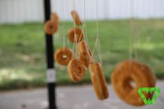 Lord of the Rings Birthday - Games - The One Ring (Donut on a string)