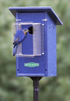 Bird-Safe® Bluebird House & Pole with Noel Guard, a barrier that protrudes 4-3/4 inches from the entrance hole, ensures nestlings are protected from cats, raccoons, and squirrels. #birdhouses