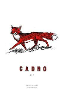 fforest cymraeg prints are a series of posters illustrating the welsh words that are important to us at fforest. 'cadno' fox Printed locally on hig. Learn Welsh, Welsh Words, Welsh Language, Celtic Nations, Learn Another Language, My Father, Fathers, Fox Print, Forest School