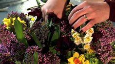 Paula Pryke - Flowers Every Day