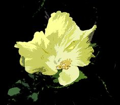 Beautiful digital painting of a hibiscus!