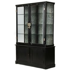 Fine Cast Iron Cabinet | From a unique collection of antique and modern vitrines at http://www.1stdibs.com/furniture/storage-case-pieces/vitrines/