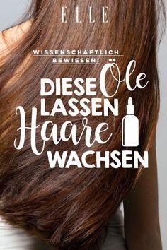 These oils make hair grow longer ELLE-Diese Öle lassen die Haare länger wachsen Make Hair Grow, Grow Long Hair, How To Make Hair, Natural Hair Mask, Natural Hair Styles, Long Hair Styles, Natural Beauty, Beauty Care, Beauty Hacks