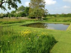 Le jardin plume, tranquil pool of water with different grasses