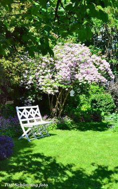 Tittis Trädgård: Äntligen kom sommaren!