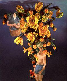 Catalina Schliebener, Flowers 7, 19 x 25 cm, collage de libros, 2011     Bisagra arte contemporaneo