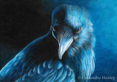 Nevermore. Polychromos color pencil 29x21cm
