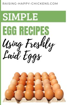 When there's an abundance of eggs from your backyard chickens, it's good to have a stock of simple egg recipes to use that are quick, nutritious, and different from each other. These simple egg dishes are a reflection of my own culture, from places I've lived in: Spain, Scotland, England, and Italy. All are original recipes I've learned from friends, sometimes with my own twist. Choose from sweet or savoury. >> Chicken Egg Colors, Chicken Eggs, Egg Facts, Raising Meat Chickens, Easy Egg Recipes, Egg Dish, Easy Meals, Simple Meals, Chickens Backyard