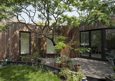 Tree House 6a Architects 8