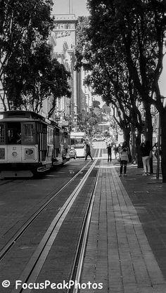 Film Photo Black & White Digital Download California San