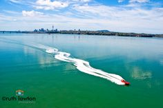 Jet Boating on the Waitemata Harbour with Auckland Adventure Jet