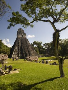 Tikal-- climbed it....probably 1975ish...I remember the monkies the most though