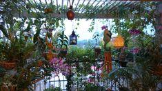 Tour: Jayashree and Rajan's Sprawling Garden Apartment in Kerala ~ The Keybunch . Tour: Jayashree and Rajan's Sprawling Garden Apartment in Kerala ~ The Keybunch … – Alka – Terrace Decor, Terrace Garden, House Plants Decor, Plant Decor, Kerala, Indian Garden, Buddha Garden, Indian Living Rooms, Beautiful Gardens