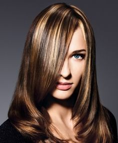 images of chunky highlights lowlights for brown hair | brunette_hair_with_blonde_hair_highlights855.jpg