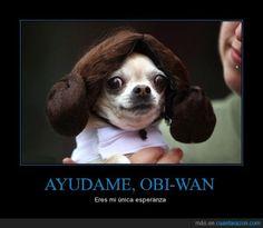 AYUDAME, OBI-WAN - Eres mi única esperanza