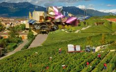 Marques de Riscal, Rioja, Spain - 12 Wine Destinations to Add to Your Bucket List   Travel + Leisure