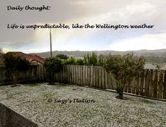 Life is unpredictable just like the Wellington weather - hail in Spring!  http://suzyspics.blogspot.co.nz/2014/10/a-few-l-words.html