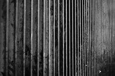 Lijn: Een hek aan de kant van de weg. Door de herhaling van de railing heeft de foto een ritmisch en gestructureerde weergave.