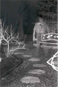 EVPs have long been studied as proof of the paranormal. In January ghost hunters recorded one of the most convincing EVP recordings ever. Ghost Images, Ghost Pictures, Ghost Pics, Photos Of Ghosts, Ghost Ghost, Creepy Ghost, Creepy Photos, Scary Places, Haunted Places