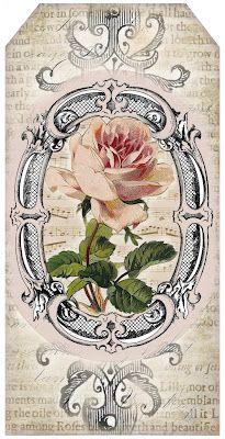 Pink Roses Tag