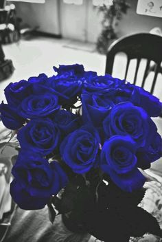 Electric Blue Roses perfect bouquet!