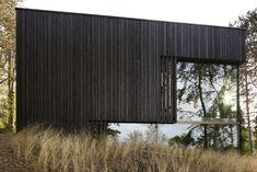 Black and mirrored architecture