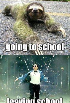 Funny School Memes, Crazy Funny Memes, Really Funny Memes, Stupid Memes, Funny Relatable Memes, Haha Funny, Funny Jokes, Hilarious, Animal Jokes