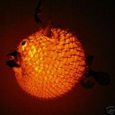 Puffer fish on pinterest fish denver and aquarium for Puffer fish lamp