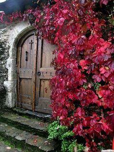 a beautiful church. Arched Doors, Windows And Doors, The Holy Mountain, Stair Steps, Amazing Grace, Beautiful Places, Lovely Things, Entryway, Windows