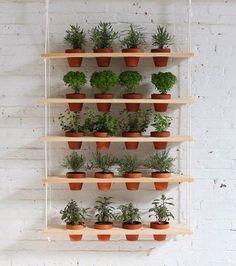 Morar em um apartamento com varanda pequena não é desculpa para não cultivar flores, plantas e temperos. Confira algumas ideias para você transformar o seu espaço em uma área mais colorida e viva…