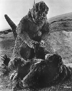 Picture of King Kong vs. Godzilla