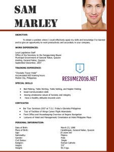 Free Resume Template Free Template And Microsoft Word