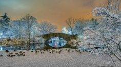 Gapstow Bridge in Central Park, New York City (© johnandersonphoto/iStock/Getty Images) January 2, 2016