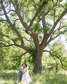 I am obsessed with lovely old trees like this from last Saturday's wedding!  Unfortunately many in my area are down due to the 75mph winds in last nights storm!! And we have no power till maybe Sunday!? Yikes!! #storm #hugestorm #wind #tree #bigtrees #nopower #poweroutage #weddingday #romanticweddingphotos #soloverly #puremichigan #adamichigan #michigan #westmichigan #westmichiganweddingphotographer