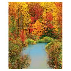 The Paper Store Springbok Autumn Reflection 1500pc Jigsaw Puzzle