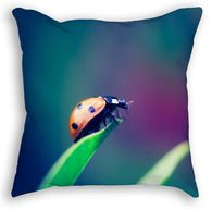 Lady Bug Throw Pillow Lady Bug, Throw Pillows, Pets, Ladybug, Cushions, Decorative Pillows, Decor Pillows, Pillows, Ladybugs