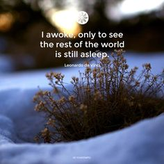 I awake only to see the rest of the world is still asleep.