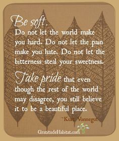 Be soft. Do not let the world make you hard. Do not let the pain make you hate. Do not let the bitterness steal your sweetness. Take pride that even though the rest of the world may disagree, you still believe it to be a beautiful place. —Kurt Vonnegut ..*